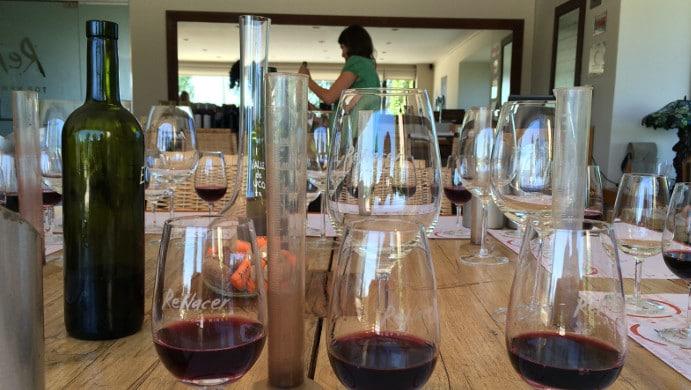 Make wine Renecer