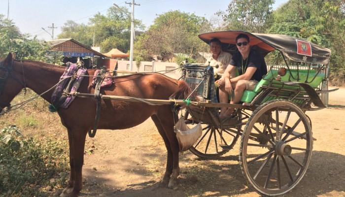 John Horse and Cart in Bagan